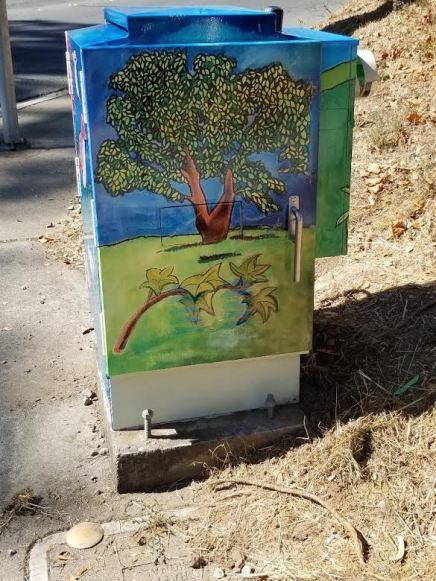 San Bruno Utility Box installed 3
